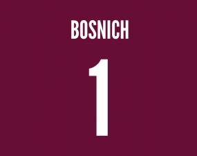 aston villa keeper bosnich
