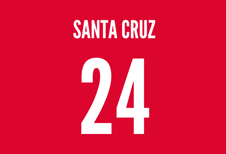 bayern munich striker roque santa cruz