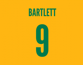 south africa and charlton striker shaun bartlett