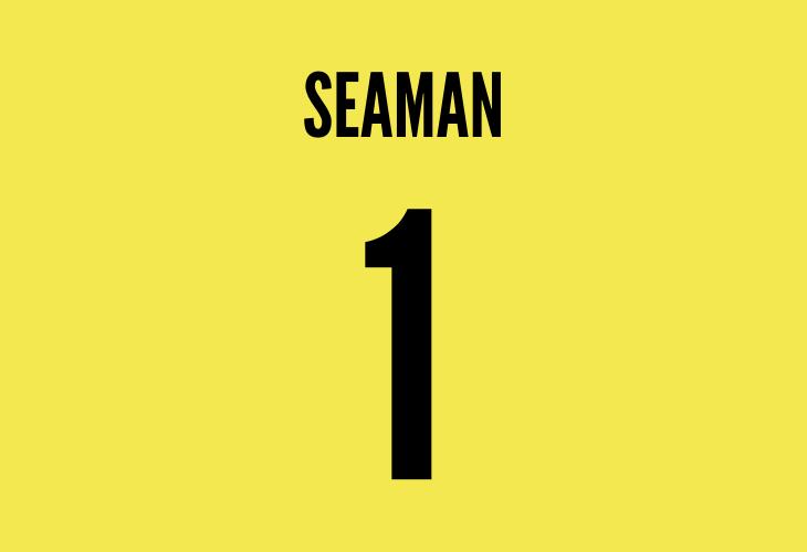 arsenal goalkeeper david seaman