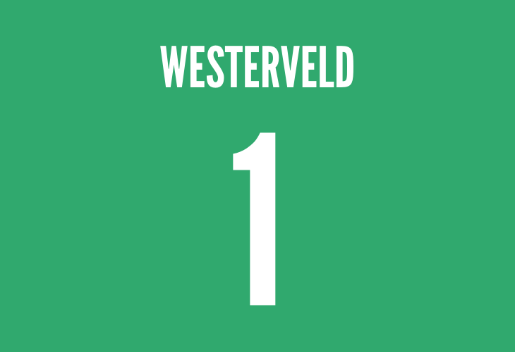 liverpools dutch goalkeeper sander westerveld